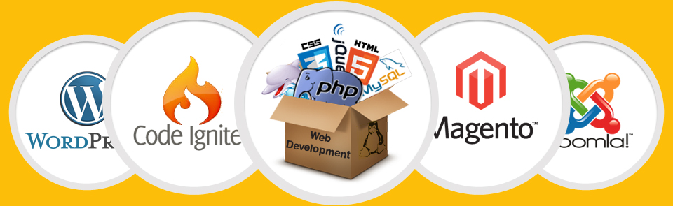 web-development-services